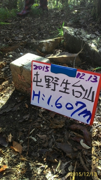 20151213尖石鄉屯野台山...