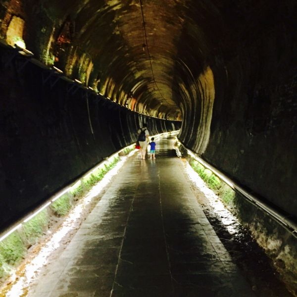 180825貓仔們功維敘隧道探...