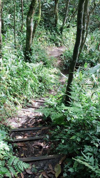 魯壁山步道