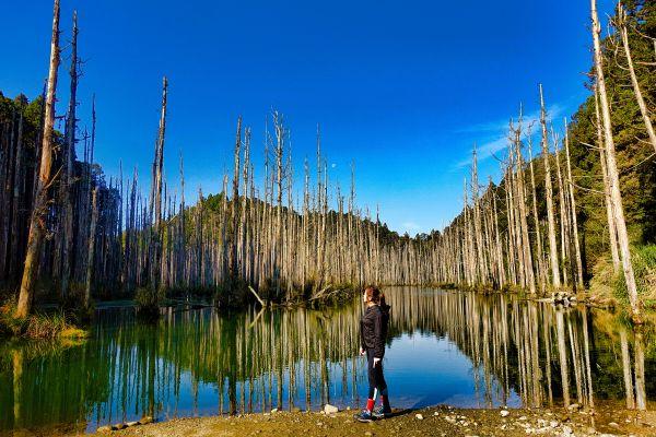水漾森林。鹿屈山O型2018....