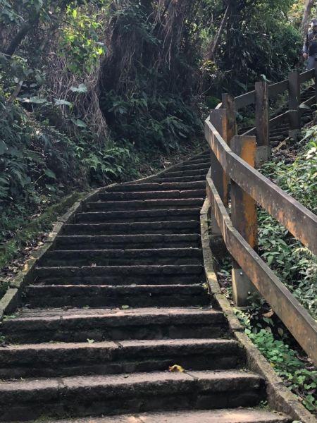 麗山橋口親山步道