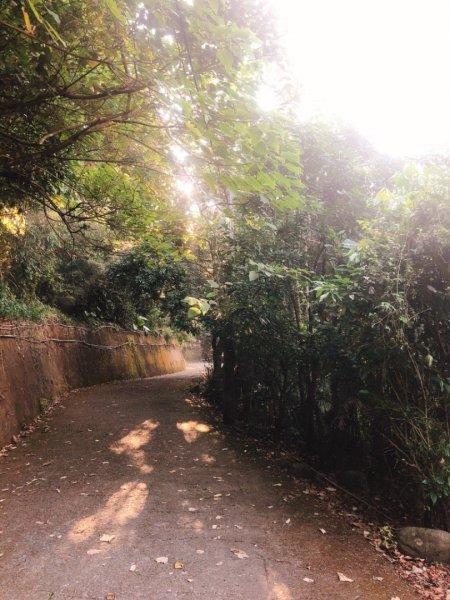 大坑二號步道