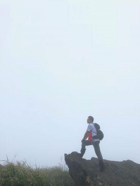 苗圃七星主峰東峰公園回苗圃