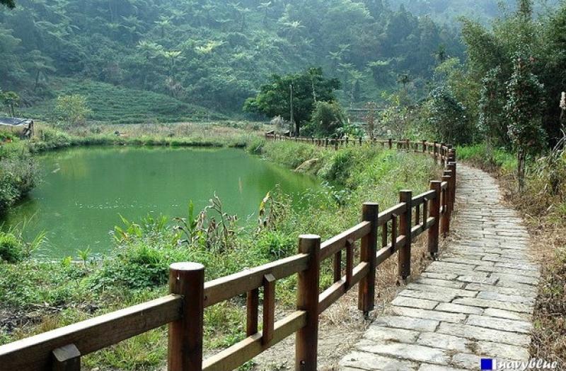 綠色隧道、野薑花溪步道、進學步道、柴巃古道