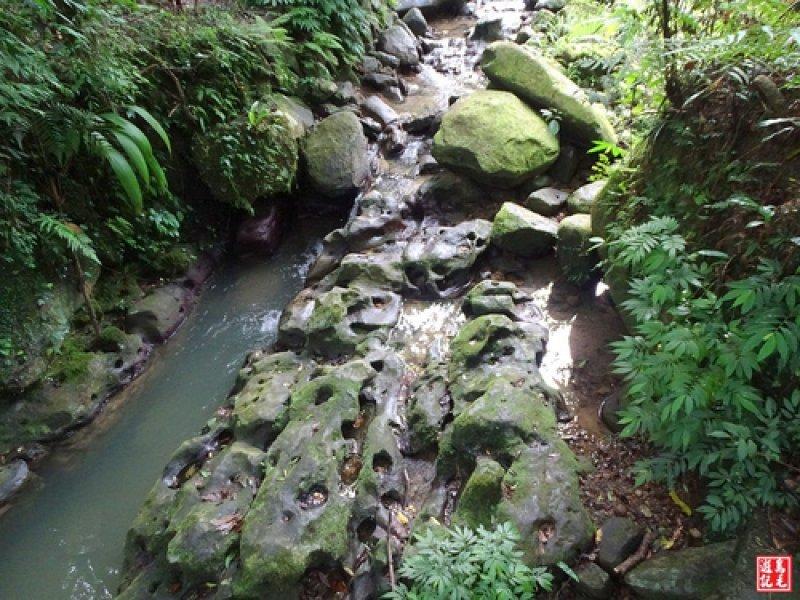 茶香環狀步道群(小天空、健康、壺穴步道、茶展中心步道)
