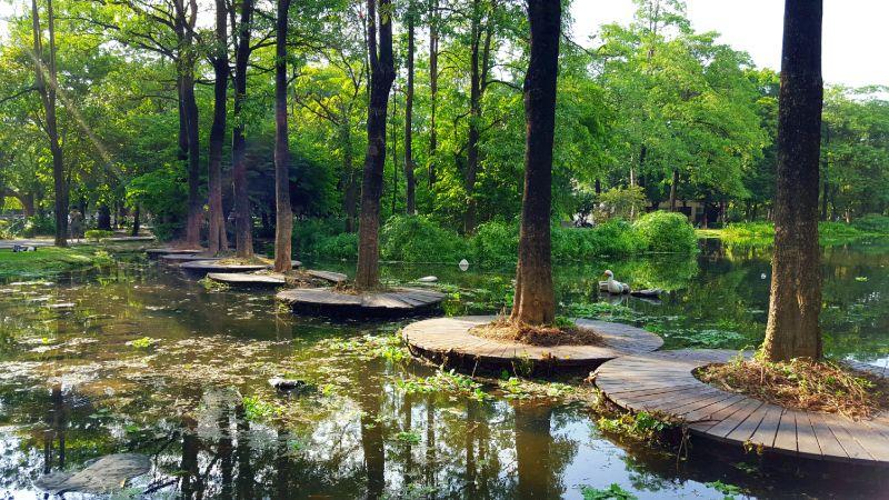 大東濕地公園步道