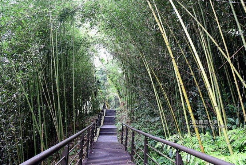 公興龍美步道(麻竹湖步道)