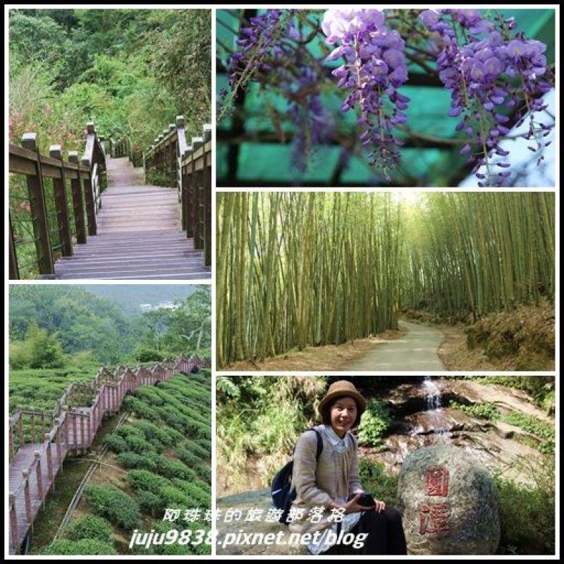 嘉義。瑞里紫藤花季。綠色隧道。野薑花溪步道。瑞太古道。圓
