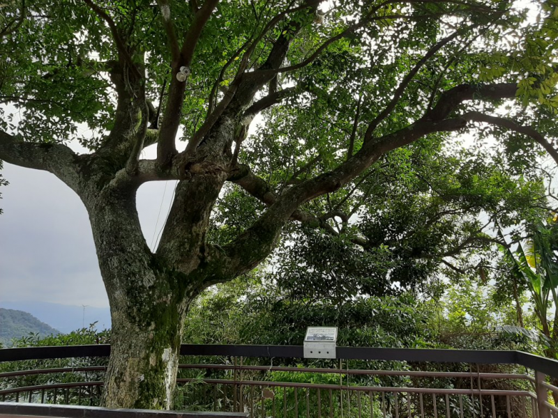臺北大縱走4:聖人橋至大湖公園_778077