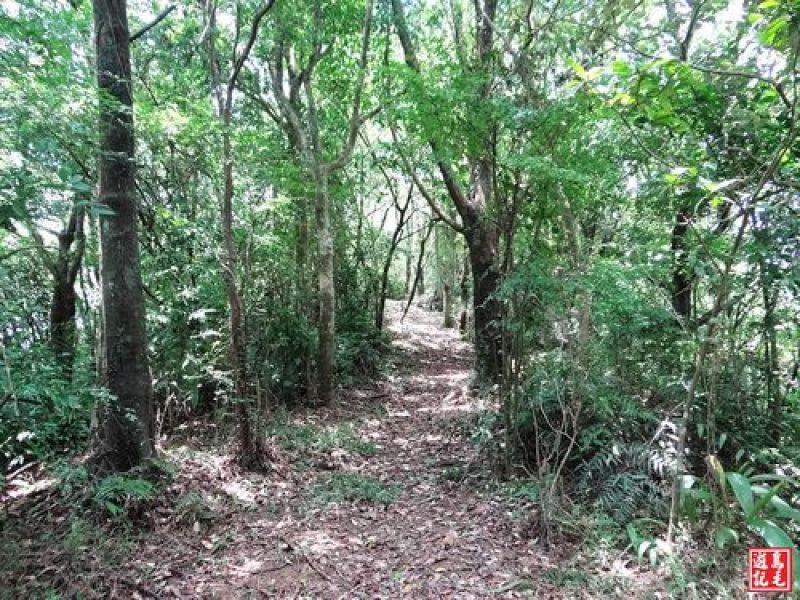 上內平林步道