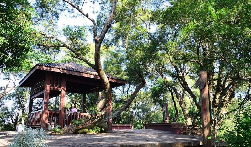 麒麟山森林步道