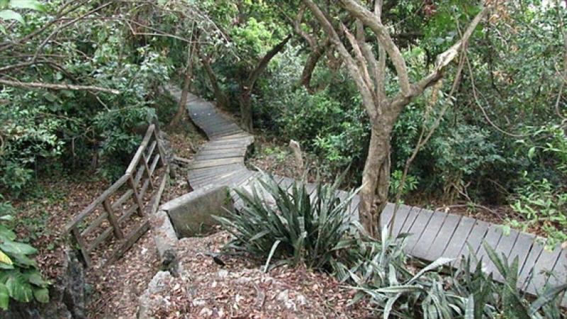 高雄龜山登山步道