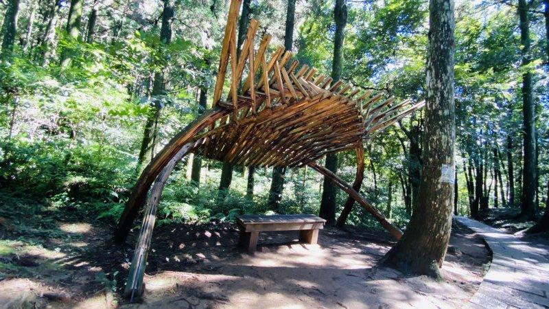 桃園復興-東眼山國家森林遊樂區自導式步道仙氣滿滿下午茶