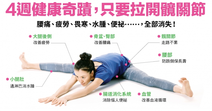 神奇 的 劈腿 伸展 操 pdf