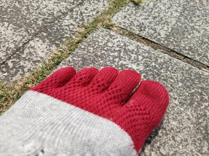 WalkPlus健將五指襪2.0