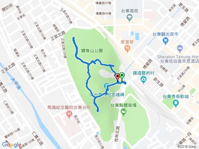 2018-03-10 台東市 鯉魚山步道