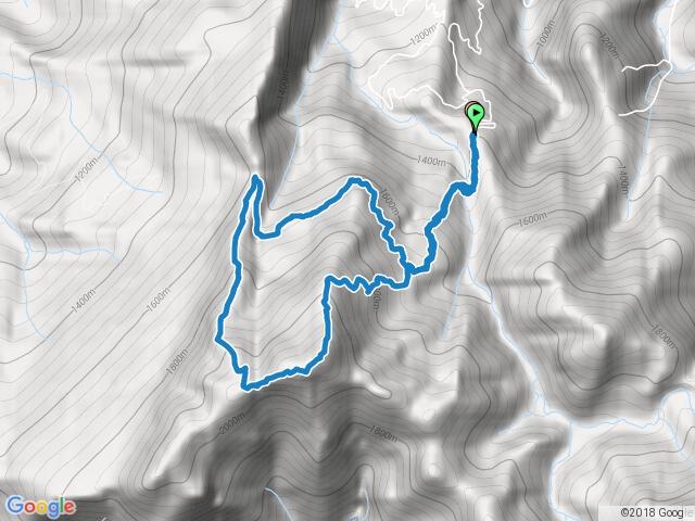 加里山-杜鵑嶺-大坪林道 P型